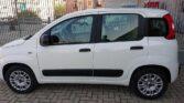 Fiancata Fiat Panda colore bianco
